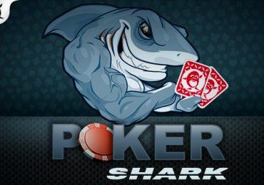 Правила Покер Шарк