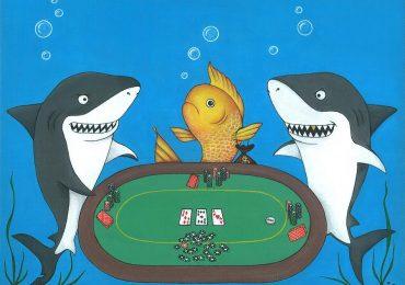 Фиш в покере — кто это такой
